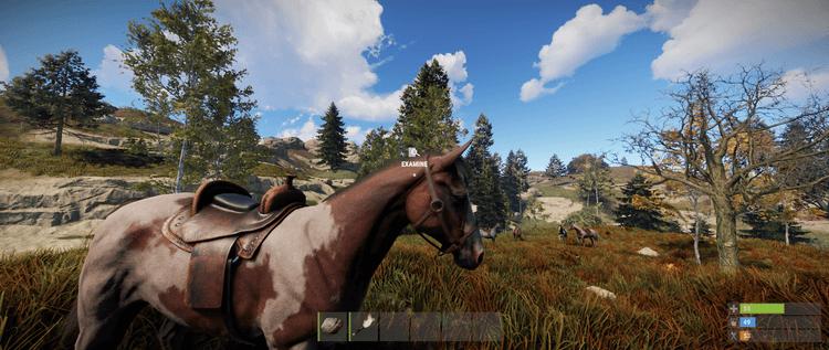 конное снаряжение Rust